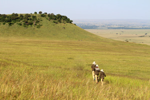 Rolling hills of the Mara