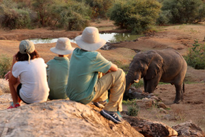 Watching elephat at the Sarara  waterhole Sarara