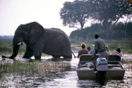 Game viewing by boat