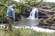 Uhuru Falls, Murchison National Park
